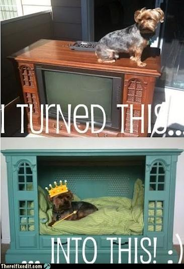 old fashion tv into doggy bed
