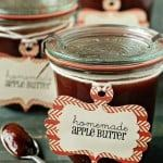 slow cooker homemade apple butter recipe