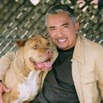 top 5 dog training tips from cesar millan