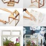 diy picture frame terrarium project