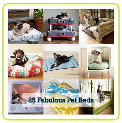 fabulous diy upcycled pet bed ideas