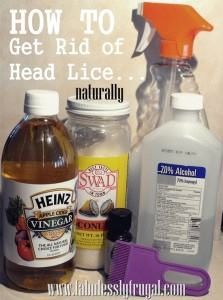 head lice home remedy