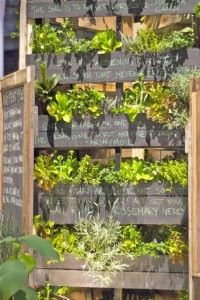 Wonderful Chalkboard Pallet Garden