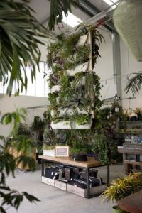 Urban Gardening Ideas find this pin and more on urban garden ideas Vertical Garden