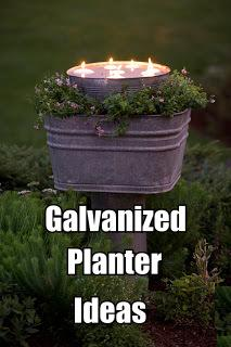 creative galvanized planter ideas