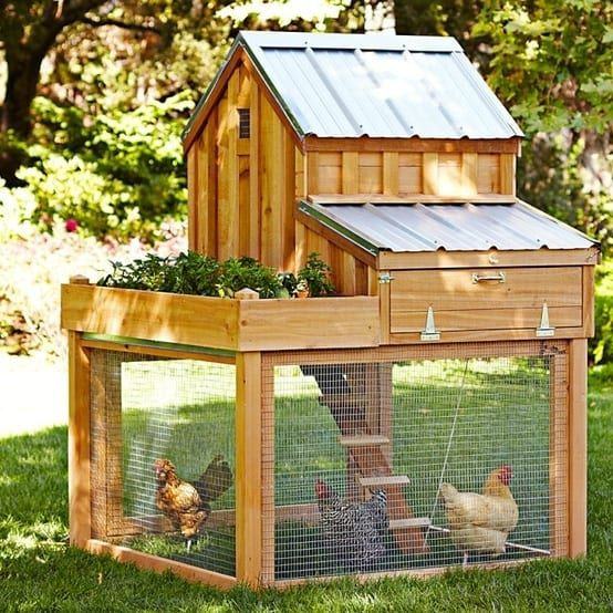 100's Of Free Chicken Coop Plans