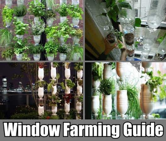 Vertical Window Farming Tutorials