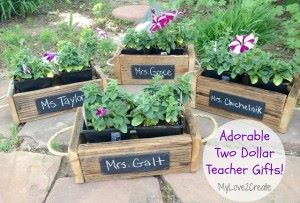 Chalkboard planter boxes