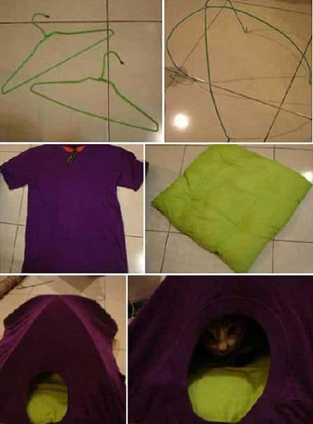 diy cat tent old t shirt hangers
