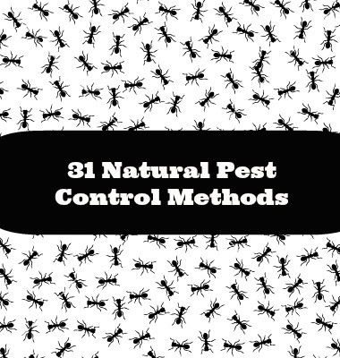 natural pest control methods