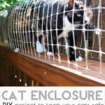 diy cat enclosure