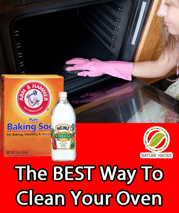 how to clean your oven