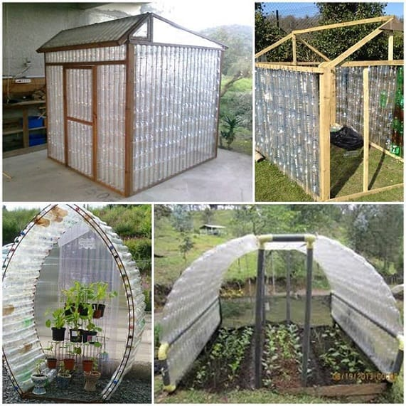 plastic bottle green house