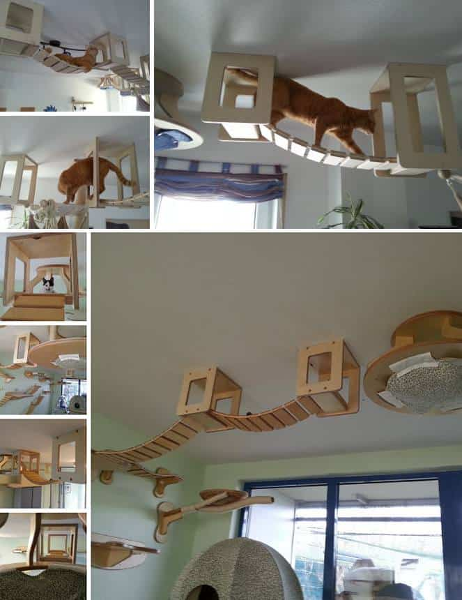 The ultimate indoor kitty playground diy cozy home for Diy jungle gym ideas