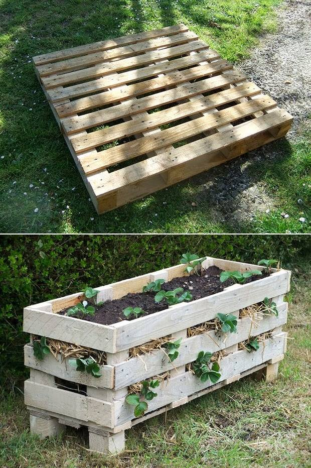 The Best Pallet Planter You Will Ever Find