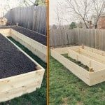 Grow Your Own Food In Raised Garden Beds