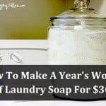 365 Days Of Laundry Soap For $30.00