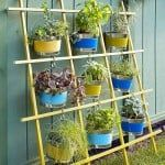 Vertical Container Trellis