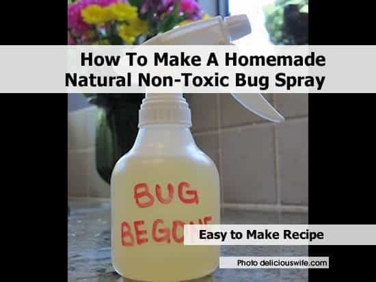 All-Natural Bug Spray