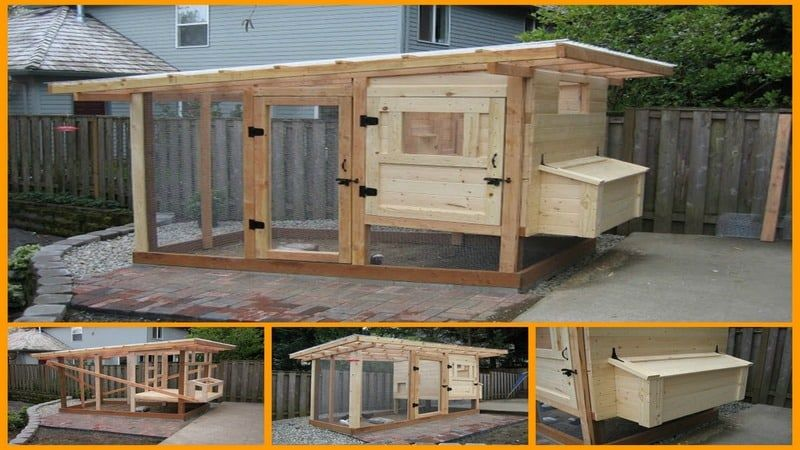 DIY Chicken Coop Tutorial