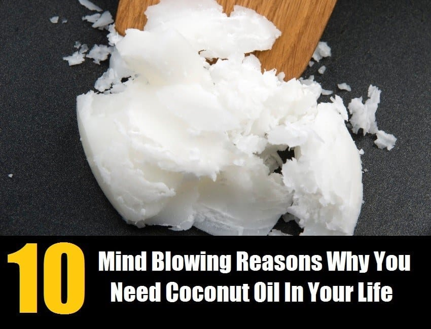 10 Fabulous Reasons Coconut Oil Is Needed In Your Life