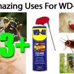 13+ Amazing Uses For WD-40