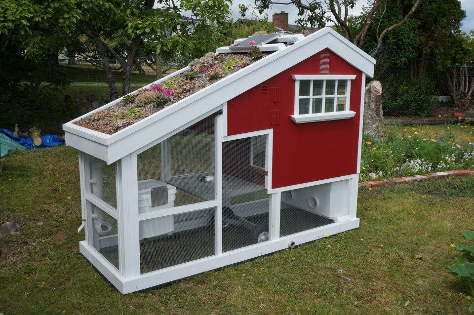 The Coolest Chicken Coop (Better Than Most Human Houses)