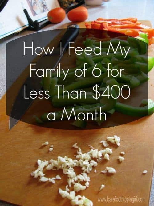 Frugal Eating (Feed 6 For Less Than $ 400)