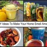 7 Amazing DIY Air Freshener Ideas