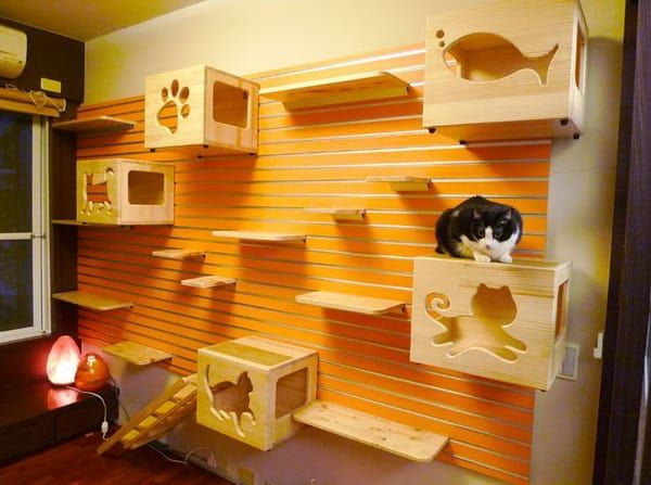modular cat climbing walls by catswall diy cozy home