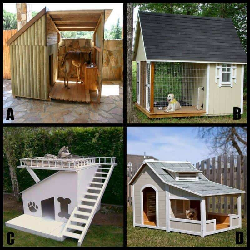 Coops, Hutches, And Other Pet Accommodations