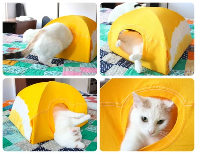 DIY Cat Tent Using An Old T-Shirt