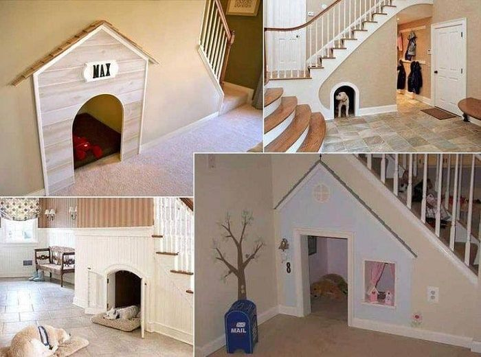 Indoor Dog Rooms