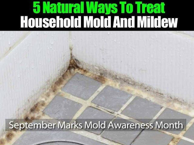 How To Treat Mold In Bathroom 28 Images How To Remove Mold In Your Bathroom Groomed Home