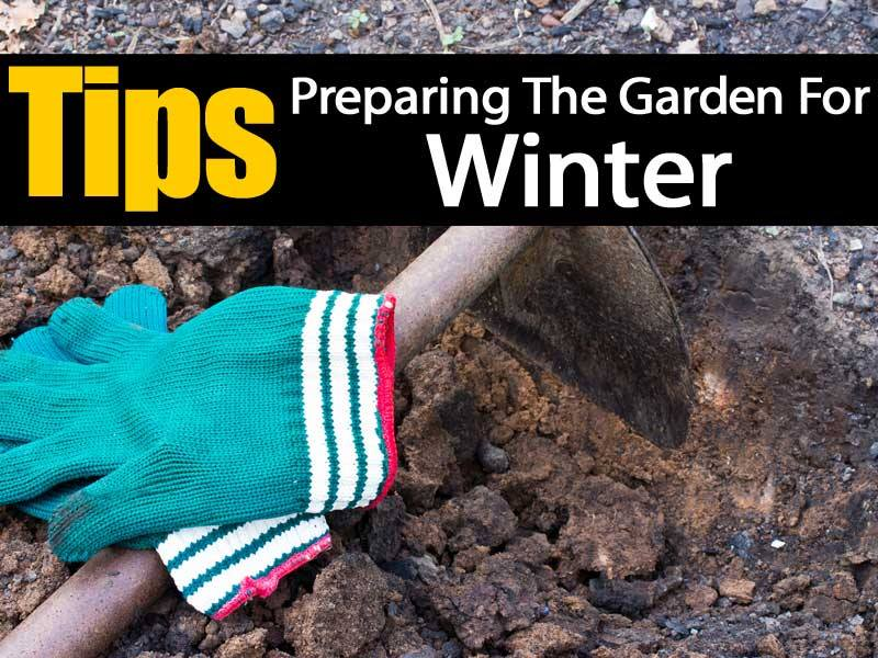 Tips On Preparing The Garden For Winter
