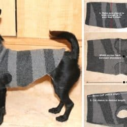 Recycled Dog Sweater