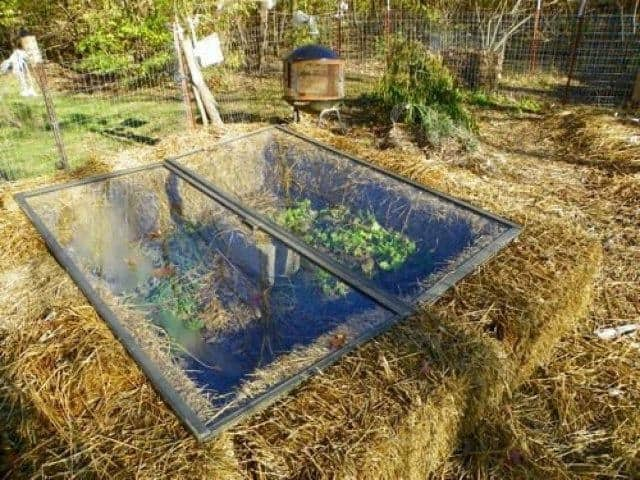 Building A Straw Bale Cold Frame