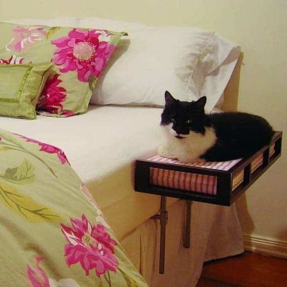 cat side bed