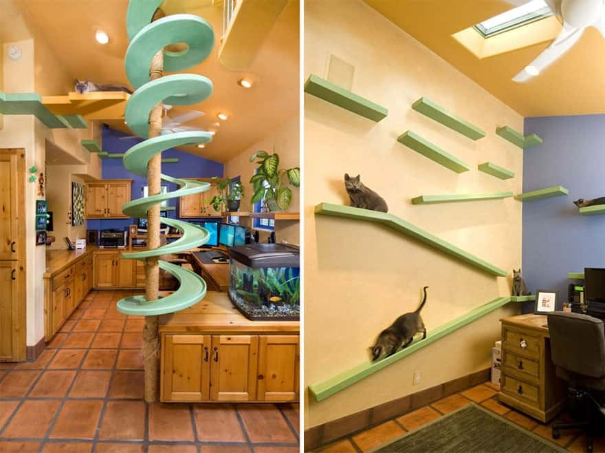 cat walkway system