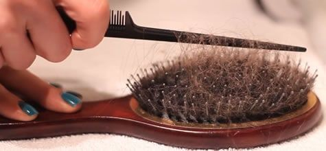 clean brushes and combs