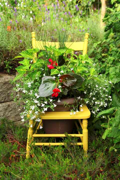 wooden chair planter