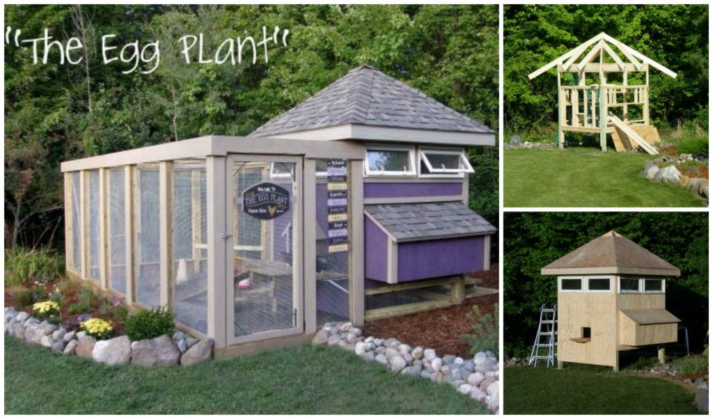 the egg plant chicken coop