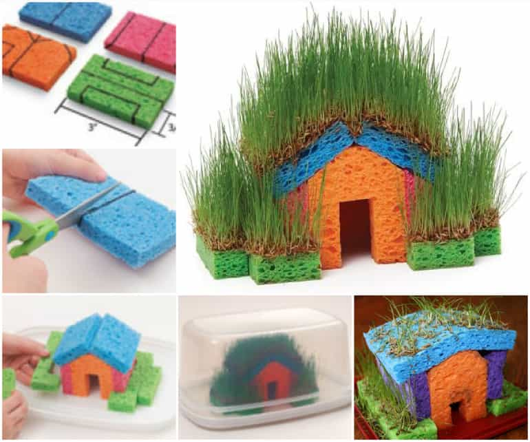 Fun with grass seeds and sponges diy cozy home for Diy cozy homes