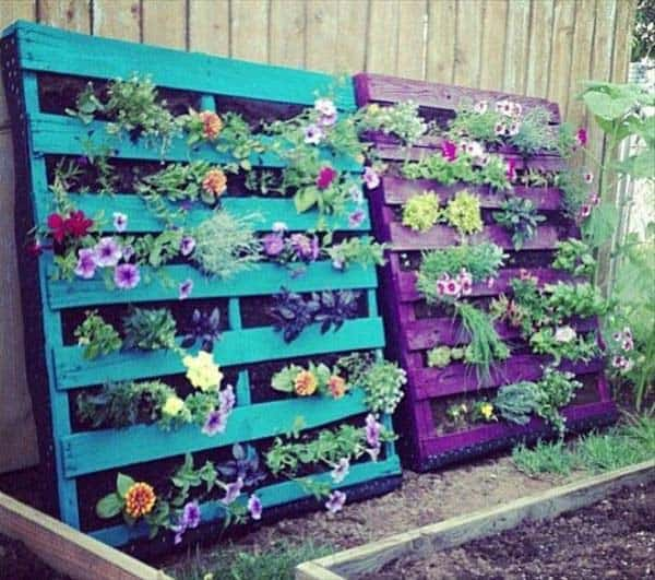 colorful pallet greenery