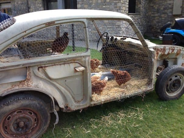 car chicken coop