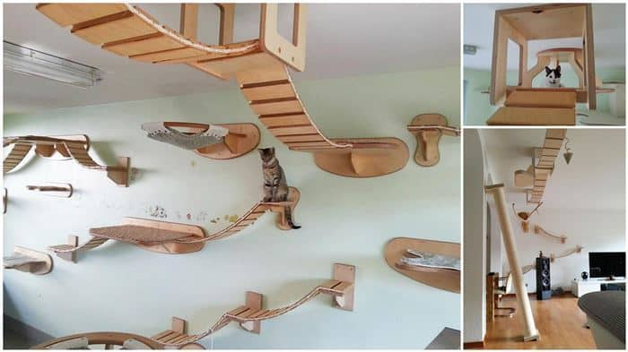Off The Ground Play Structures For The Kitties | DIY Cozy Home