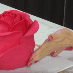Astonish Your Friends With This Amazing DIY Rose Cake!