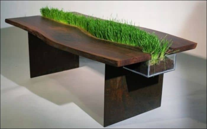 live-grass-table
