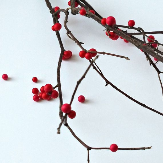 winterberry-branches