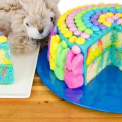 A Marbled Cake Perfectly Decorated For Easter